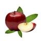 Fumari_Apple_Mint_Shisha_Tobacco_100g
