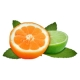Fumari-Citrus-Mint-Hookah-Tobacco-100g