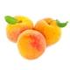 Fumari_Hookah_Shisha_Apricot_100g